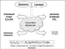 Сайт-ФПК_Слайды-115