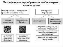 Сайт-ФПК_Слайды-91
